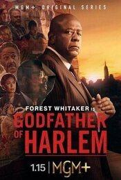 Cartel de El padrino de Harlem
