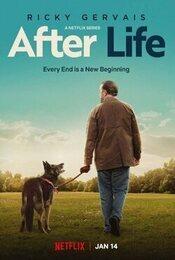 Cartel de After Life