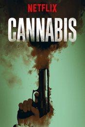 Cartel de Cannabis