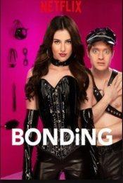 Cartel de Bonding