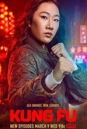 Cartel de Kung Fu