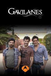 Cartel de Gavilanes