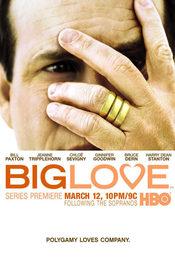 Cartel de Big Love