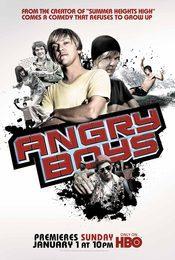 Cartel de Angry Boys