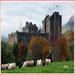 CastleLeoch
