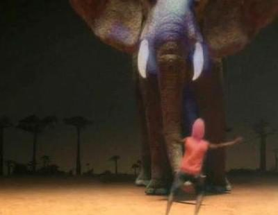 Mundial 2010 en Cuatro: el elefante