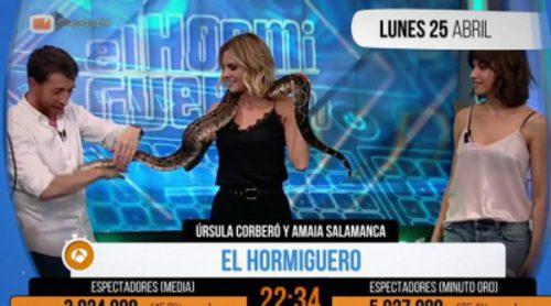 """Amaia Salamanca agarra una serpiente y convierte a 'El hormiguero' en """"Minuto de oro"""""""