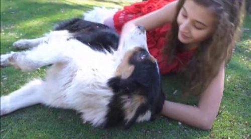 Descubre cómo es la telenovela juvenil 'Heidi, bienvenida a casa'