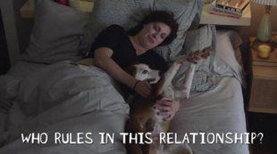 Primer avance de 'Downward Dog', la nueva serie de ABC