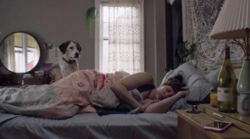 Tráiler de 'Downward Dog', comedia de ABC protagonizada por Allison Tolman
