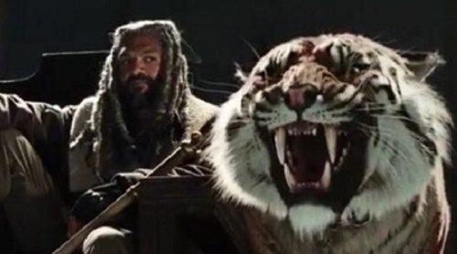 Ezekiel y su tigresa Shiva son presentados en el sorprendente primer tráiler de la séptima temporada de 'The Walking Dead'