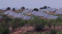 """""""El camino del Sol"""": el corto de César Vea para denunciar el hachazo a las renovables"""