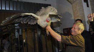 Agreden a un cámara de Mediaset en la fiesta del lanzamiento de la pava