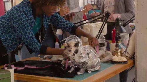 'Alex, Inc.': Teaser tráiler de la nueva comedia de Zac Braff ('Scrubs') para ABC