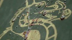 'The Originals': Tráiler de la quinta y última temporada del spin-off de 'Crónicas vampíricas'