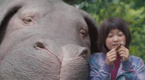 'Okja': Tráiler de la película de Netflix sobre un súper cerdo modificado genéticamente