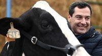 """Juanma Moreno, candidato a las elecciones andaluzas, pregunta a una vaca si votará al PP: """"Di que sí, hombre"""""""