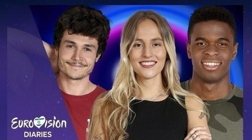 'Eurovisión Diaries': Lo mejor y lo peor de las canciones de la preselección de Eurovisión 2019 en 'OT 2018'