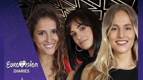 'Eurovisión Diaries': ¿Qué canción y concursante de 'OT 2018' debe ir a Eurovisión 2019?