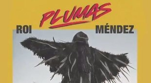 """Avance de """"Plumas"""", el segundo single de Roi Méndez"""
