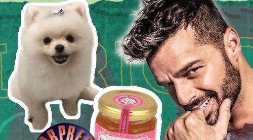 ¿Cómo se extendió el bulo de Ricky Martin, el perro y la mermelada de 'Sorpresa, Sorpresa' sin redes?