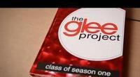 'Glee' busca nuevas estrellas con 'The Glee Project'