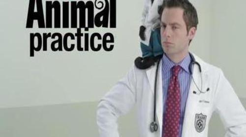 Avance de 'Animal Practice' de NBC