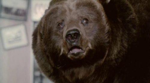 Anuncio de Chobani, con un oso, de la Super Bowl 2014