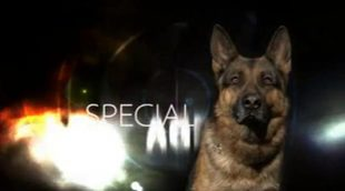 Así era 'Agente especial' (Telemadrid), la serie documental sobre los perros de la Guardia Civil